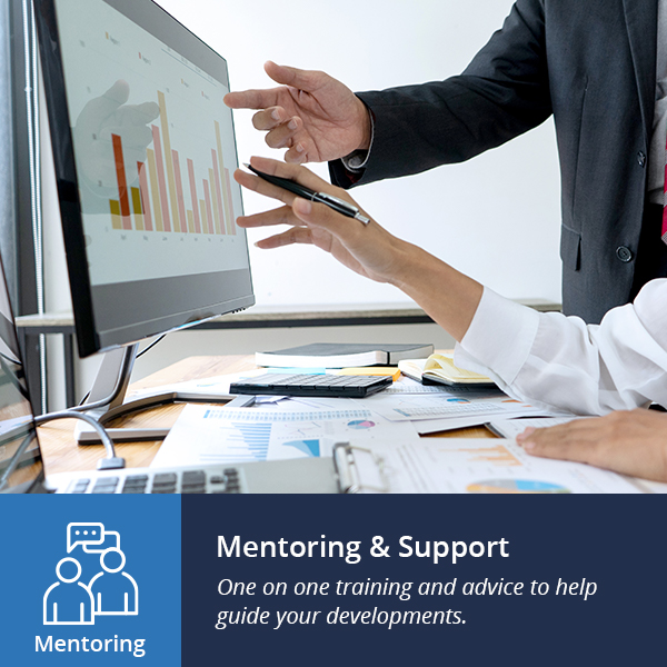 mentoring and support
